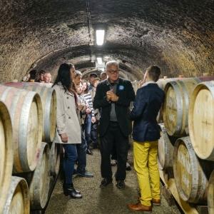 l1020558_nimrod-winery__2017