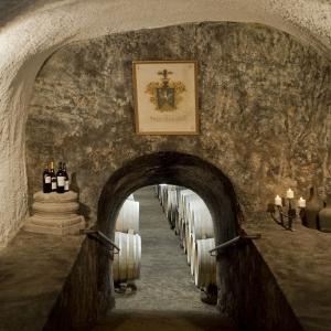 Pince lejárat / Pathway of the Cellar