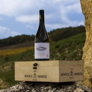 szőlőterületek / vineyards